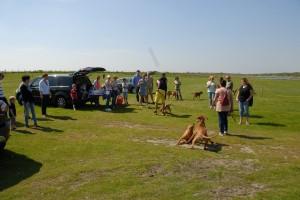 Strandwandeling2014-24